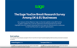 Screenshot of the Sage YouGov Brexit Research Survey