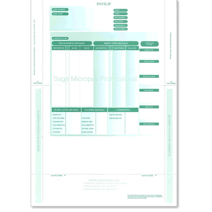 2 Part Laser Security Payslips (no file copy)