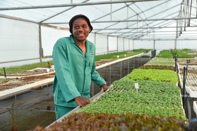 Seed to start-up: How 2 agricultural entrepreneurs plan to feed the nation
